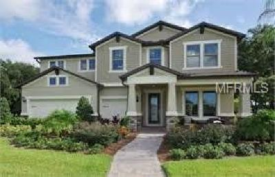 Orlando Single Family Home For Sale: 17507 Lagoda Lane