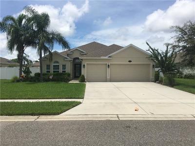New Smyrna Beach Single Family Home For Sale: 806 Snapdragon Drive
