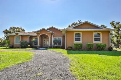 Wimauma Single Family Home For Sale: 3308 Circle L Place