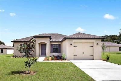 Deland Single Family Home For Sale: 526 W Hubbard Avenue