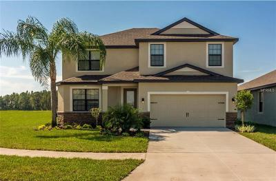 Riverview Single Family Home For Sale: 12536 Ballentrae Forest Drive