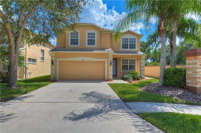 Tampa Single Family Home For Sale: 14903 Berkford Avenue