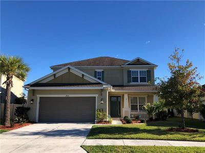 Wesley Chapel Single Family Home For Sale: 27031 Wild Bloom Drive