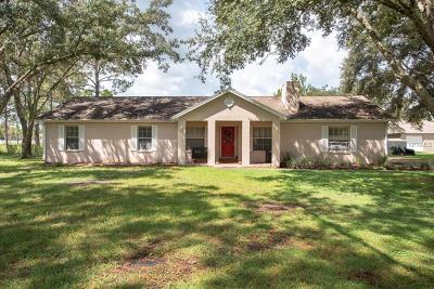 Wesley Chapel Single Family Home For Sale: 7427 Drifting Sand Drive