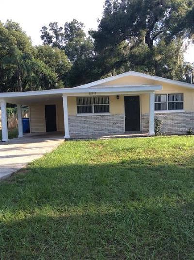 Seffner Single Family Home For Sale: 12013 Park Avenue