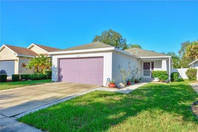 Riverview Single Family Home For Sale: 11357 Cocoa Beach Drive