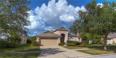 Riverview Single Family Home For Sale: 8802 Sandy Plains Drive
