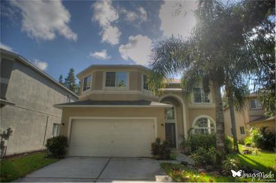 Lutz Single Family Home For Sale: 4210 Fishermans Pier Court