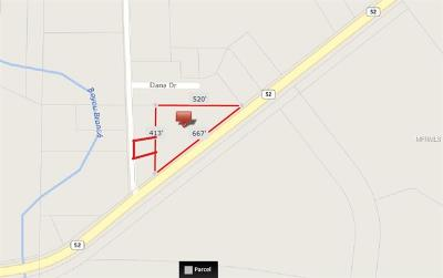 Pasco County Commercial For Sale: 31157 State Road 52