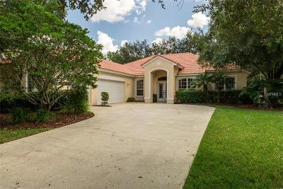 Tampa Single Family Home For Sale: 18111 Courtney Breeze Drive