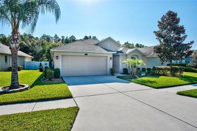 Weslely Chapel, Wesley Chapel Single Family Home For Sale: 3740 Ashton Oaks Boulevard