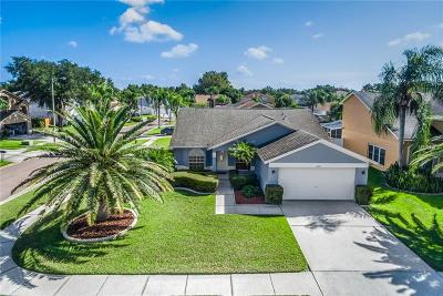 Tampa Single Family Home For Sale: 8609 Flowing Brook Court