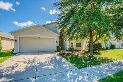 Wesley Chapel Single Family Home For Sale: 4206 Branchside Lane