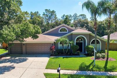 Tampa Single Family Home For Sale: 10613 Chambers Drive
