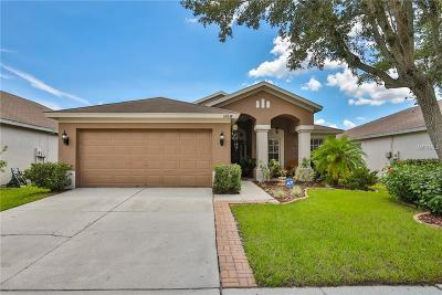 Hernando County, Hillsborough County, Pasco County, Pinellas County Single Family Home For Sale: 12638 Early Run Lane