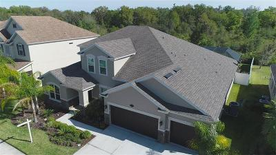 Tampa Single Family Home For Sale: 10513 Mistflower Lane