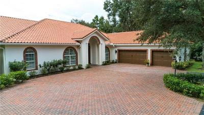 Tampa Single Family Home For Sale: 3172 Lake Ellen Drive