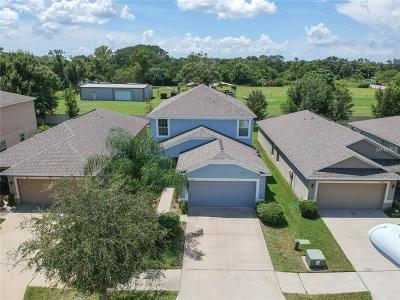 Riverview Single Family Home For Sale: 10521 Summer Azure Drive