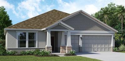 Winter Garden Single Family Home For Sale: 10222 Love Story Street