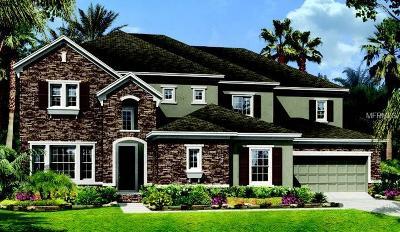 Winter Garden Single Family Home Pending: 15871 Burch Island Court