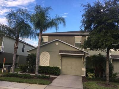 Wesley Chapel Townhouse For Sale: 2946 Willowleaf Lane