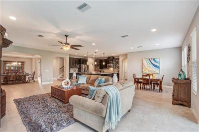 Wesley Chapel Single Family Home For Sale: 4347 Vermillion Sky Drive