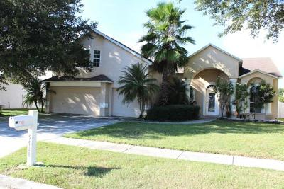Ruskin, Riverview Single Family Home For Sale: 9718 Mary Robin Drive