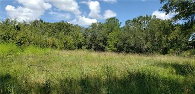 Thonotosassa Residential Lots & Land For Sale: 15355 Apache Drive