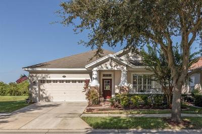 Lutz Single Family Home For Sale: 18006 Lake Reflections Boulevard