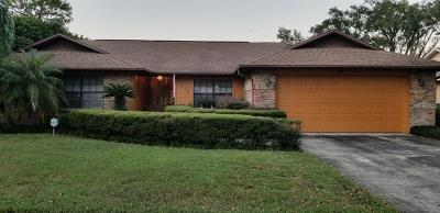 Brandon FL Single Family Home For Sale: $290,000