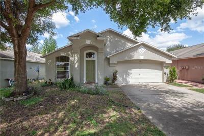 Valrico Single Family Home For Sale: 3304 Shamrock Park Place