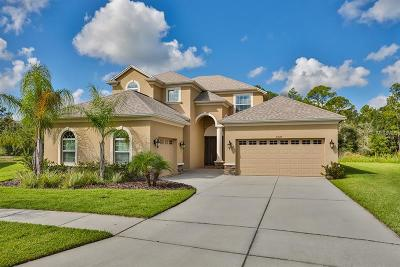 Wesley Chapel Single Family Home For Sale: 27170 Hawks Nest Circle