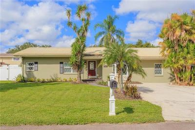 Lutz Single Family Home For Sale: 16204 Tampa Street