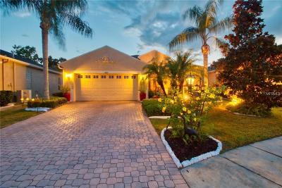 Hillsborough County Single Family Home For Sale: 807 King Leon Way