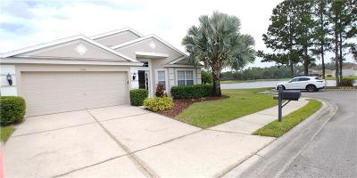 Wesley Chapel Single Family Home For Sale: 5246 Lookout Pass