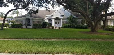 Lithia FL Single Family Home For Sale: $480,000