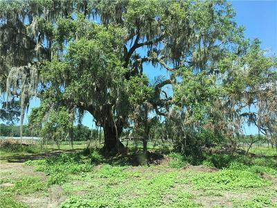 Wimauma Residential Lots & Land For Sale: 9419 State Road 674