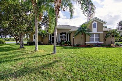 Port Orange Single Family Home For Sale: 6357 Fairway Cove Drive