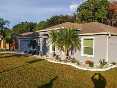 Apollo Beach Single Family Home For Sale: 6632 Clair Shore Drive