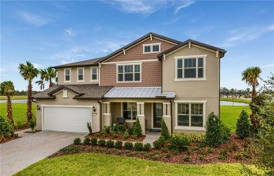 Orlando Single Family Home For Sale: 7031 Spring Drop Court