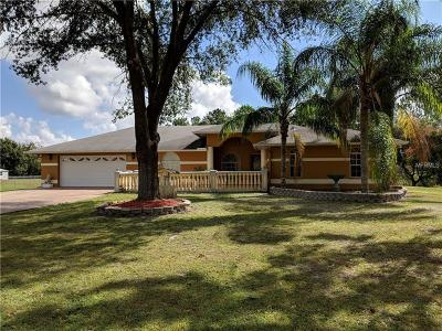 Wesley Chapel Single Family Home For Sale: 3352 Haystack Road