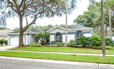 Tampa Single Family Home For Sale: 18911 Edinborough Way