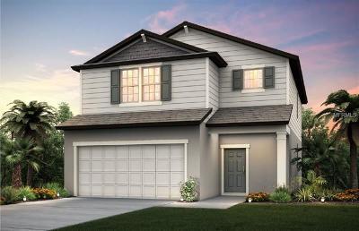 Saint Cloud Single Family Home For Sale: 3405 Soaring Drive