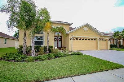 Wesley Chapel Single Family Home For Sale: 27137 Sora Boulevard