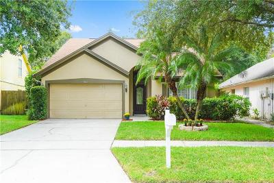 Tampa Single Family Home For Sale: 9811 Long Meadow Drive