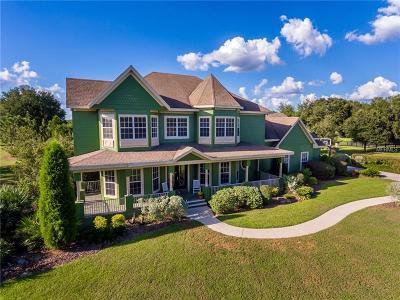Thonotosassa Single Family Home For Sale: 10548 Broadland Pass