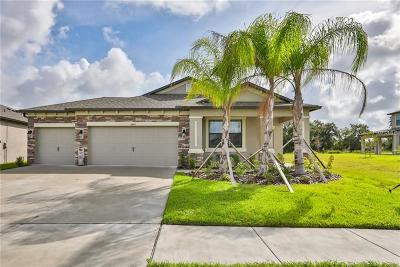 Riverview Single Family Home For Sale: 11440 Leland Groves Drive