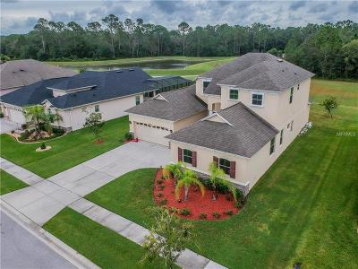Wesley Chapel Single Family Home For Sale: 27202 Sora Boulevard