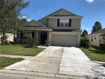New Port Richey Single Family Home For Sale: 12136 Infinity Drive