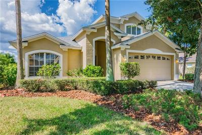 Valrico Single Family Home For Sale: 3349 Stonebridge Trail
